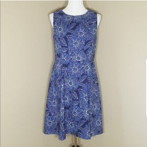 DB Signature Darby Blue Floral Fit and Flare Dress